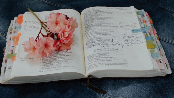 ワーキングホリデー終了後に語学学校に通ったら英語力がもっと向上する?